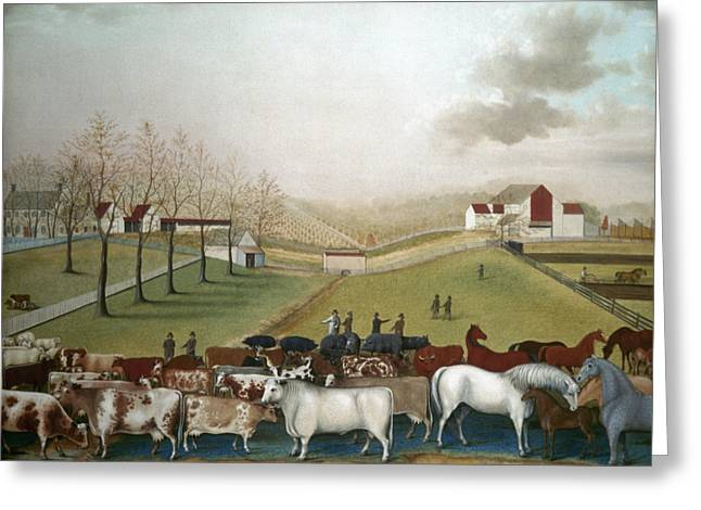 19th Century America Greeting Cards - Hicks: Cornell Farm, 1848 Greeting Card by Granger