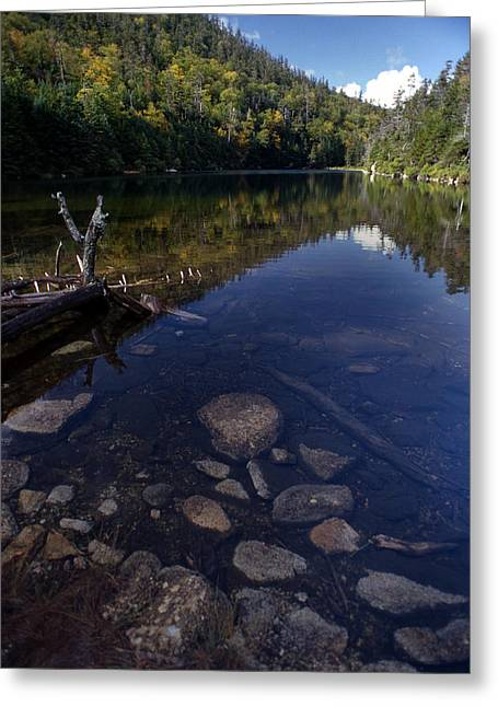 Photogaphy Greeting Cards - Hidden Pond Greeting Card by Skip Willits