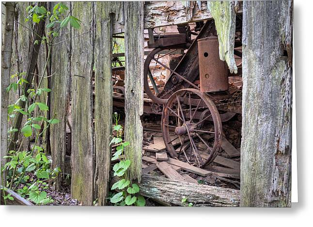 Fauquier County Virginia Greeting Cards - Hidden Treasure Greeting Card by JC Findley