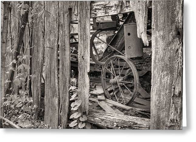 Fauquier County Virginia Greeting Cards - Hidden Treasures Sepia Greeting Card by JC Findley