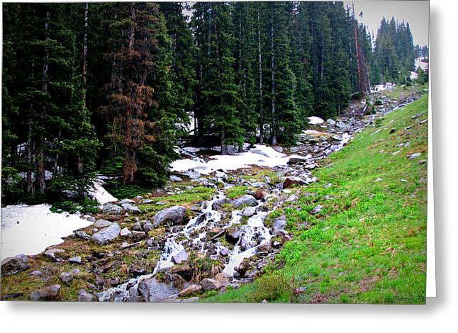 Hidden Valley Creek  Greeting Card by Aaron Burrows