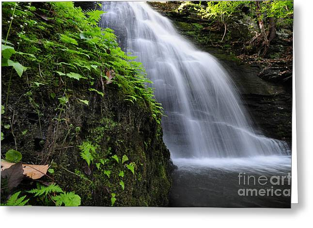 Peaceful Pyrography Greeting Cards - Hidden Waterfalls Greeting Card by Paul Ward