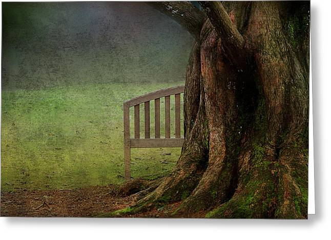 Bench Photographs Greeting Cards - Hide and Seek Greeting Card by Rebecca Cozart