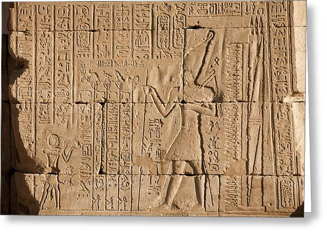 Horus Greeting Cards - Hieroglyphics Cover The Walls Greeting Card by Taylor S. Kennedy
