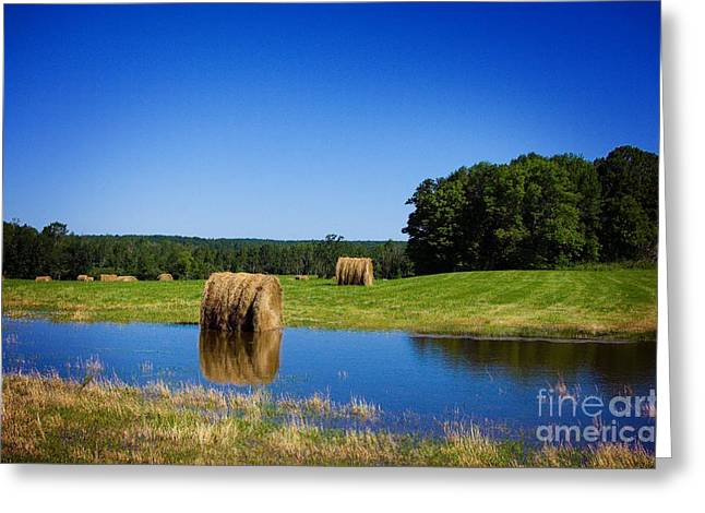 Haybales Digital Art Greeting Cards - High And Dry On The North Forty Greeting Card by The Stone Age