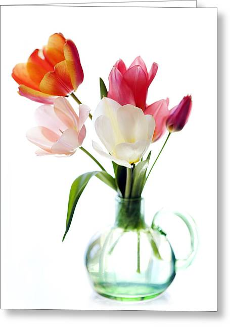Glass Vase Greeting Cards - High Key Tulips Greeting Card by Marilyn Hunt