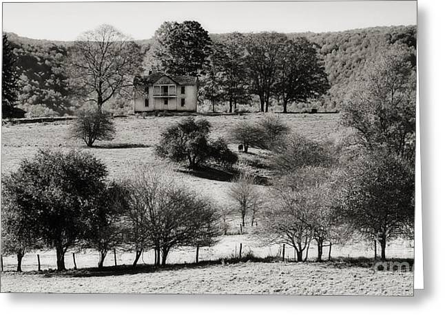 Kathleen Hill Greeting Cards - High on a Hill in Black and White Greeting Card by Kathleen K Parker