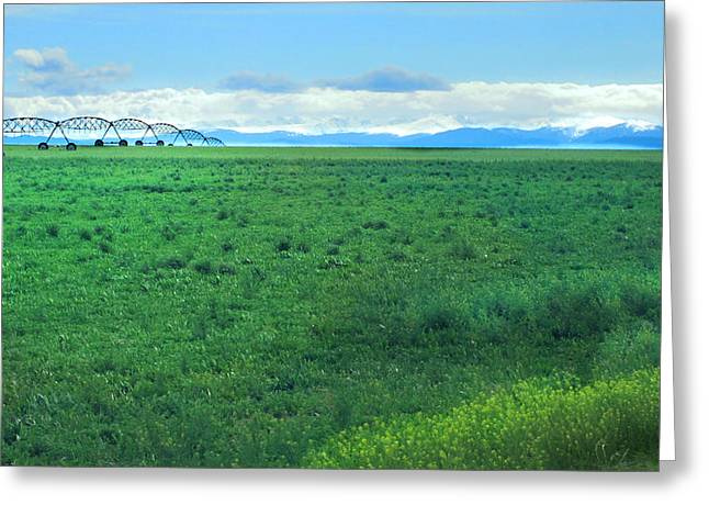 Luminist Greeting Cards - High Plains Spring Greeting Card by Ric Soulen