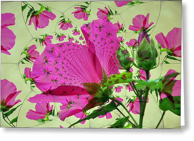 Pink Flower Prints Digital Art Greeting Cards - High Tea with Pink Hibiscus Greeting Card by Rose  Hill