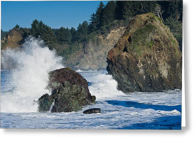 High Tide At Trinidad State Beach Greeting Card by Greg Nyquist
