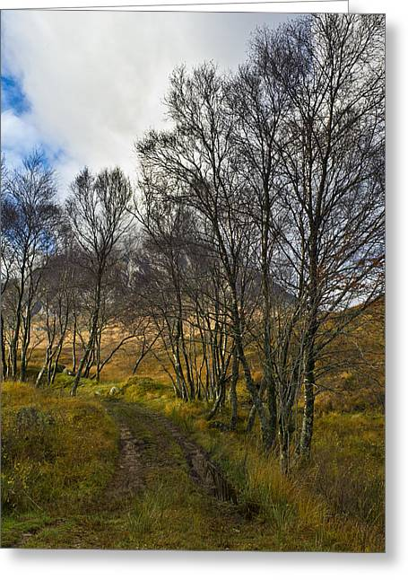 Etive Mor Greeting Cards - Highland highway Greeting Card by Gary Eason