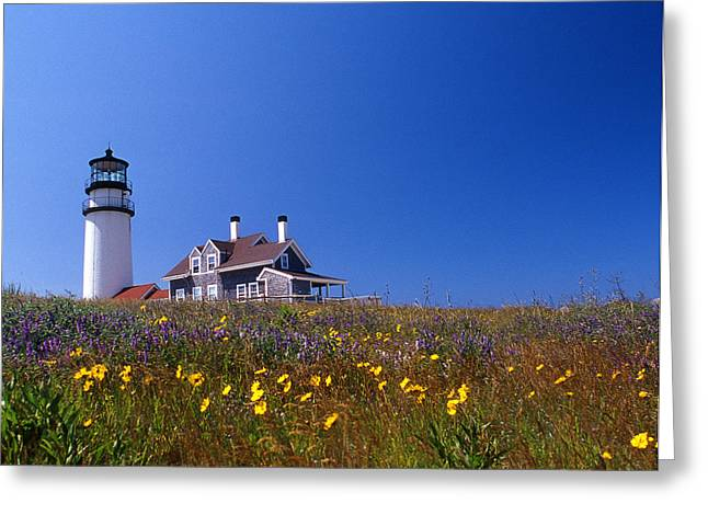 Legendary Lighthouses Greeting Cards - Highland Lighthouse Cape Cod Greeting Card by Skip Willits