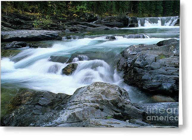 Trout Fishing Greeting Cards - Highwood River Greeting Card by Bob Christopher