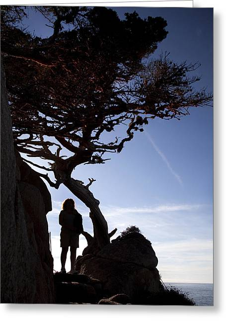 Point Lobos State Greeting Cards - Hiker at Point Lobos Greeting Card by Jeff Grabert