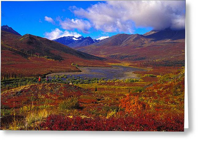 Tombstone Territorial Park Greeting Cards - Hikers In A Valley Blooming With Autumn Greeting Card by Nick Norman