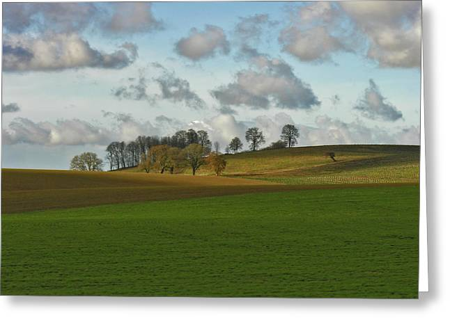Rural Landscapes Mixed Media Greeting Cards - Hill Country Greeting Card by Bonnie Bruno