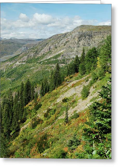West Glacier Greeting Cards - Hill of Glory Greeting Card by Michael Peychich