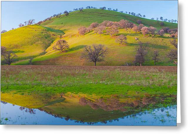 Hill Reflection In Pond Greeting Card by Marc Crumpler