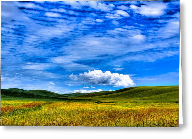 Lanscape Greeting Cards - Hills of Wheat in the Palouse Greeting Card by David Patterson
