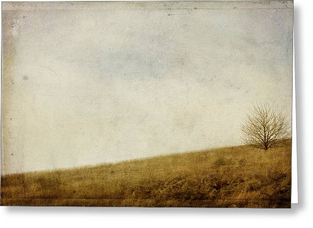 Hill Greeting Cards - Hillside Greeting Card by Rebecca Cozart