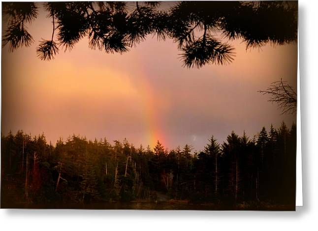 His Promise Greeting Card by Cindy Wright