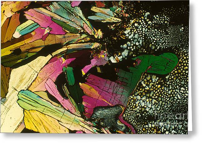 Light Micrography Greeting Cards - Histidine Greeting Card by Michael W. Davidson