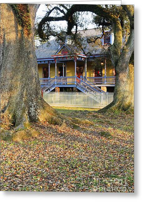 Slave Quarters Photographs Greeting Cards - Historic Plantation Slave Quarters Greeting Card by Jeremy Woodhouse