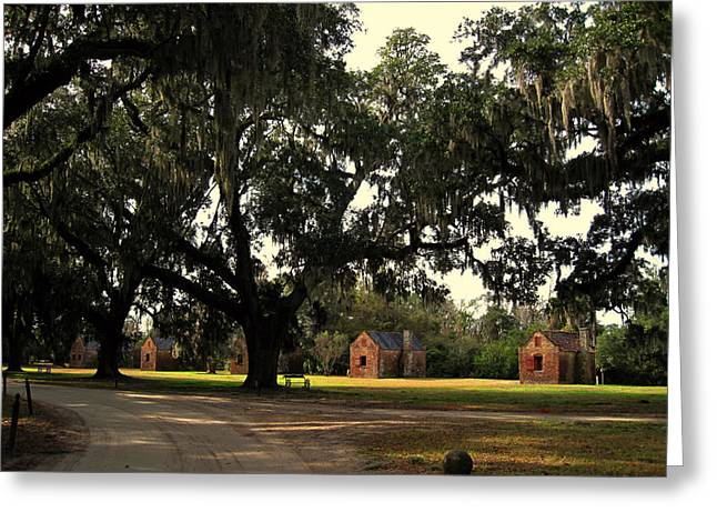 African-american Greeting Cards - Historic Slave Houses at Boone Hall Plantation in SC Greeting Card by Susanne Van Hulst