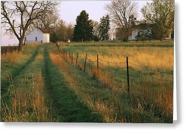 Historic Stevens Creek Farm Greeting Card by Joel Sartore