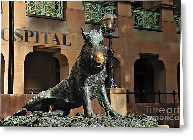 Macquarie Greeting Cards - Historic Sydney Hospital - Florentine Boar Greeting Card by Kaye Menner