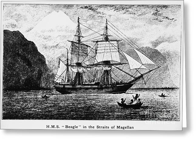 Historic Ship Greeting Cards - H.m.s. Beagle Greeting Card by Omikron