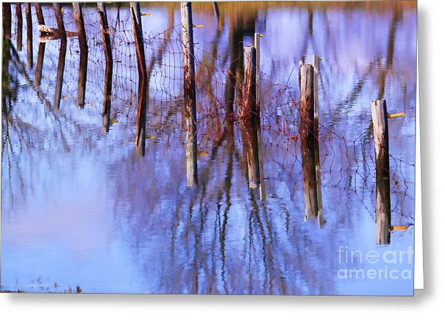 Trees Reflecting In Water Greeting Cards - Holding Steadfast Greeting Card by Cathy  Beharriell