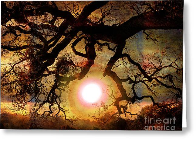 Open Space Greeting Cards - Holding the Sun Greeting Card by Laura Iverson