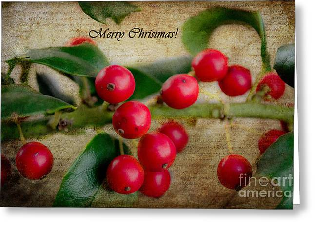Christmas Card Pyrography Greeting Cards - Holly Christmas Greeting Card by Barbara K