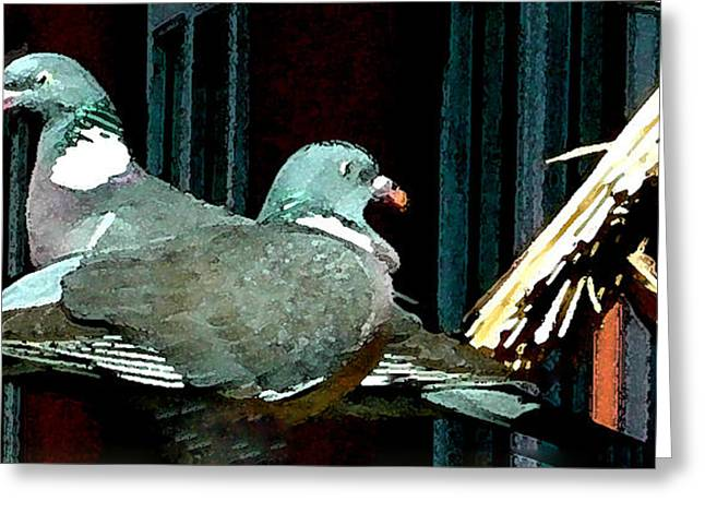 print Mixed Media Greeting Cards - Holy Pigeon Couple Mates for ever enjoy the Garden peace Greeting Card by Colette V Hera  Guggenheim