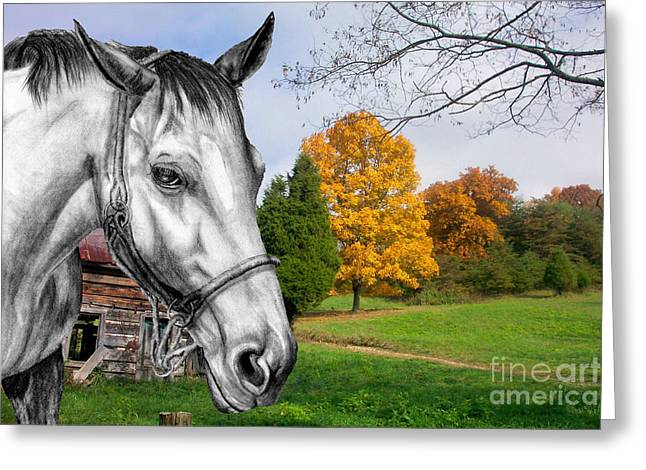 Home Again Greeting Card by Russ  Smith