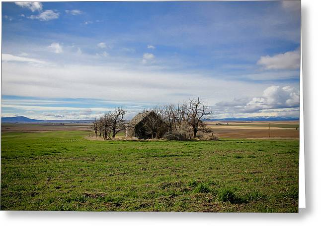 Barn Pen And Ink Photographs Greeting Cards - Home On The Range Greeting Card by Athena Mckinzie