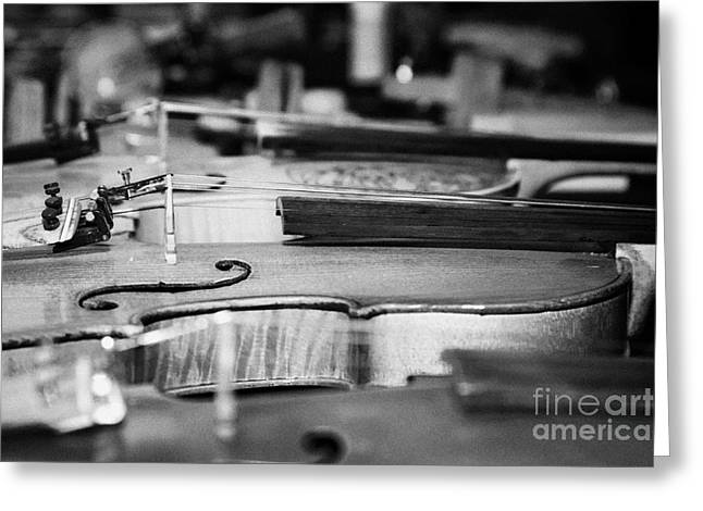 Homemade Handmade Violins Made Of Different Materials And Shape Greeting Card by Joe Fox