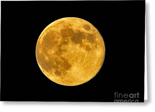 Lunation Greeting Cards - Honey Moon Close Up Greeting Card by Al Powell Photography USA