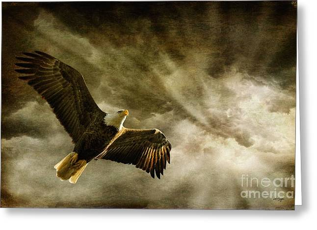 Eagle In Flight Greeting Cards - Honor Bound Greeting Card by Lois Bryan