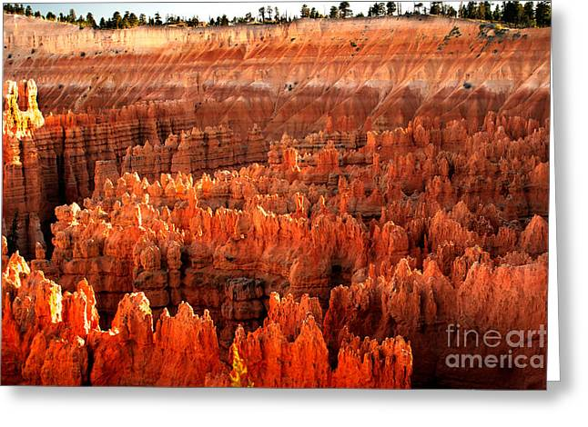 Grand Circle Greeting Cards - Hoodoos  at Sunrise Greeting Card by Robert Bales