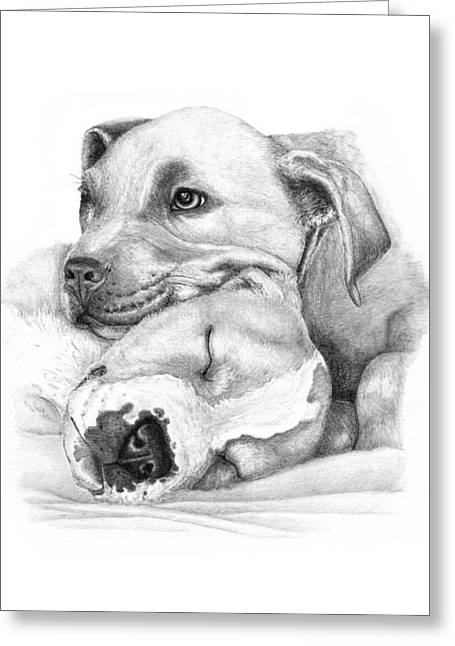 Puppies Drawings Greeting Cards - Hope and  Innocence Greeting Card by Deanna Maxwell