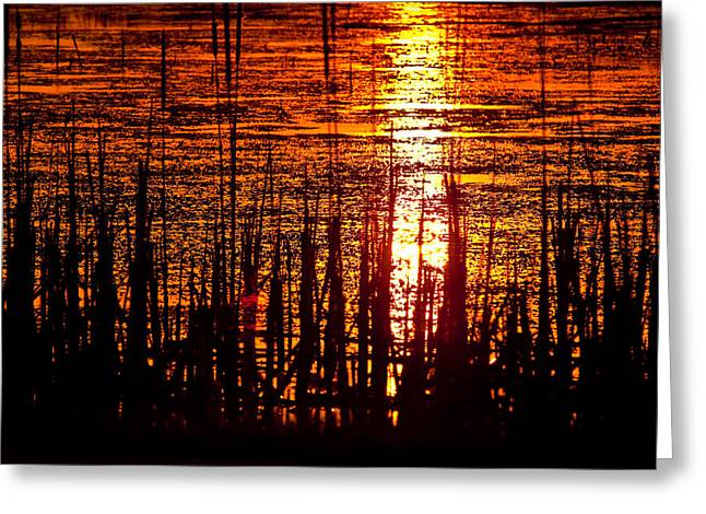 Willow Lake Greeting Cards - Horicon Marsh Sunset Wisconsin Greeting Card by Steve Gadomski