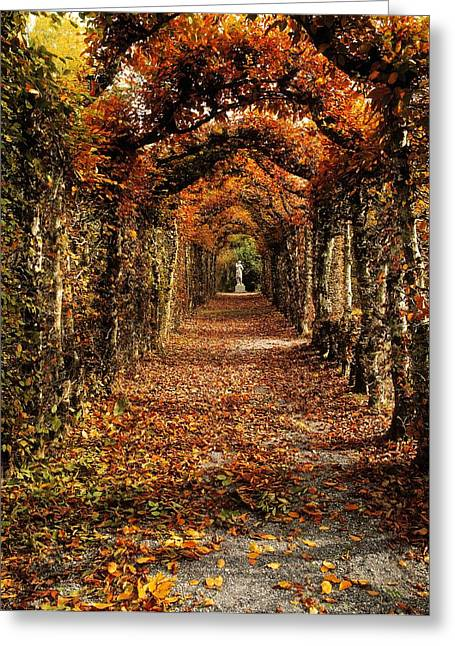Garden Statuary Greeting Cards - Hornbeam Alles, Birr Castle, Co Offaly Greeting Card by The Irish Image Collection