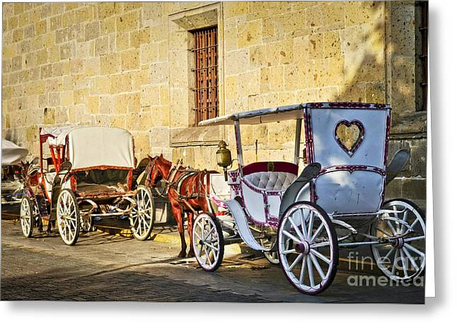 Carriage Greeting Cards - Horse drawn carriages in Guadalajara Greeting Card by Elena Elisseeva