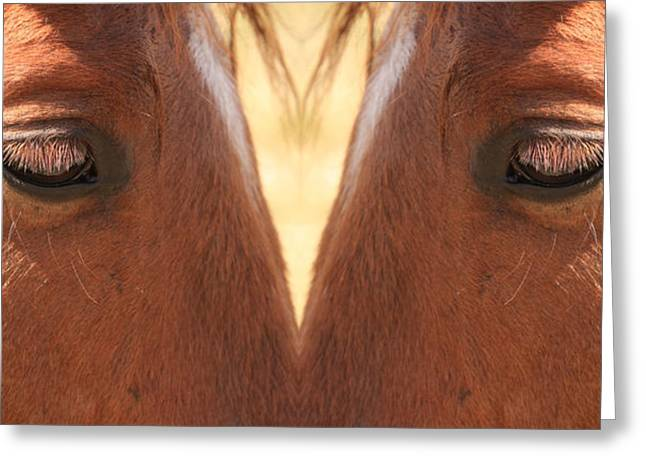Close Up Framed Prints Greeting Cards - Horse Eyes Love Greeting Card by James BO  Insogna