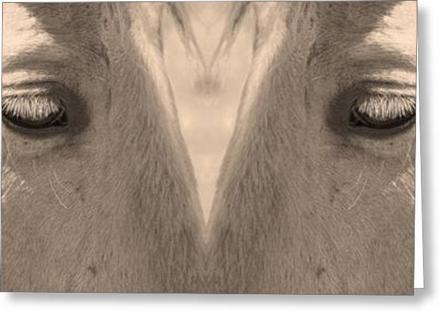 Close Up Framed Prints Greeting Cards - Horse Eyes Love Sepia Greeting Card by James BO  Insogna