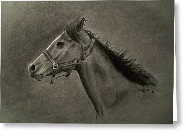Stud Drawings Greeting Cards - Horse Head Greeting Card by Michael Trujillo