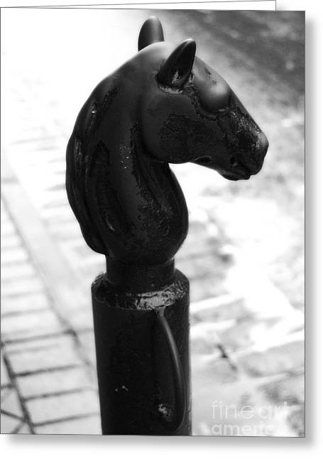 French Quarter Greeting Cards - Horse Head Pole Hitching Post French Quarter New Orleans Black and White Diffuse Glow Digital Art Greeting Card by Shawn O