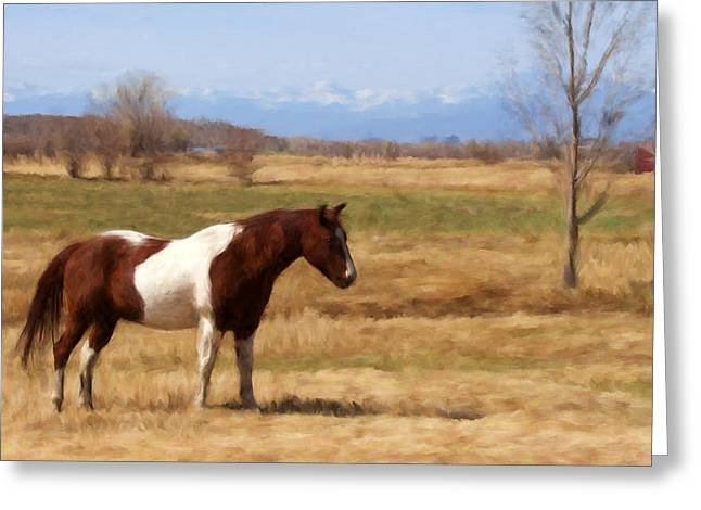 Grazing Snow Mixed Media Greeting Cards - Horse in the Rockies Greeting Card by Renee Skiba